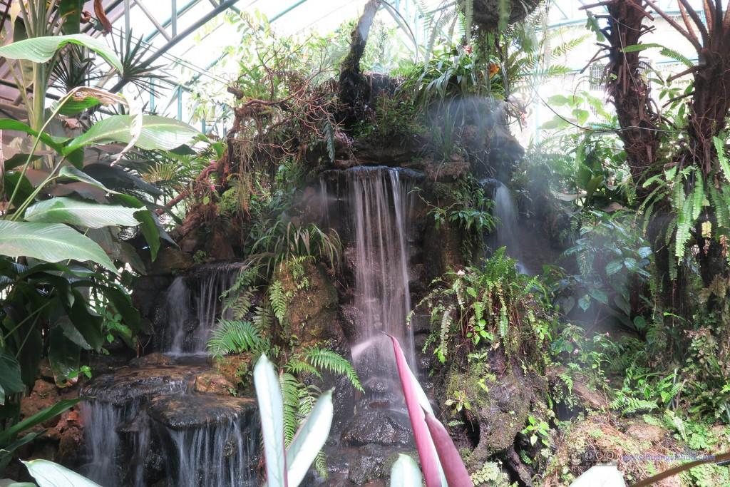 普屏植物园里的温室