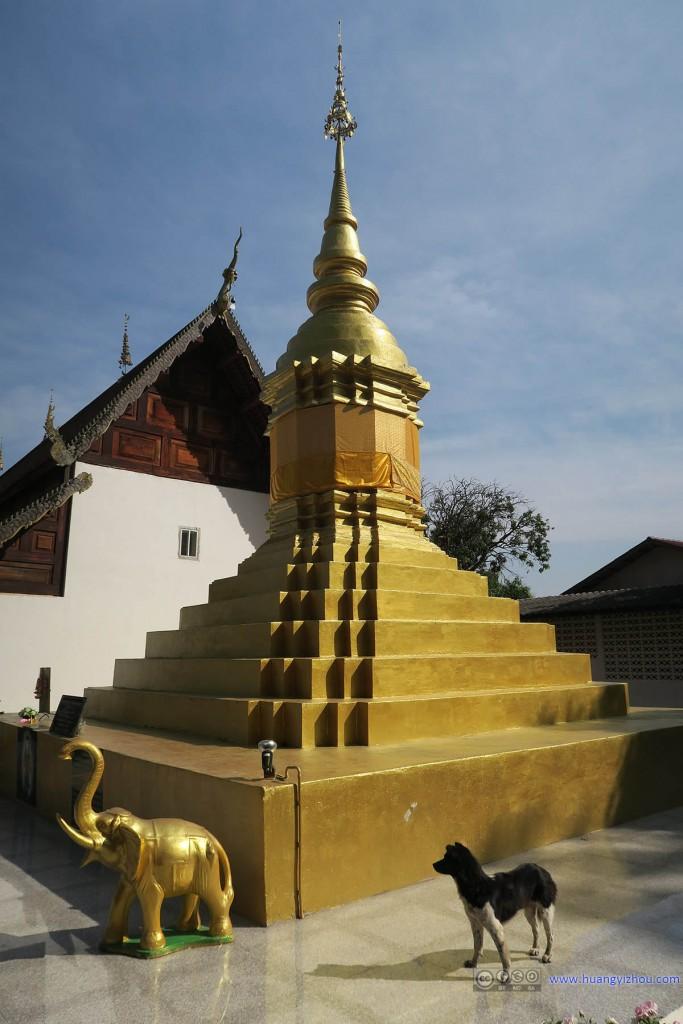 Wat Nam Hu,感觉泰国寺庙没有狗就不算寺庙了