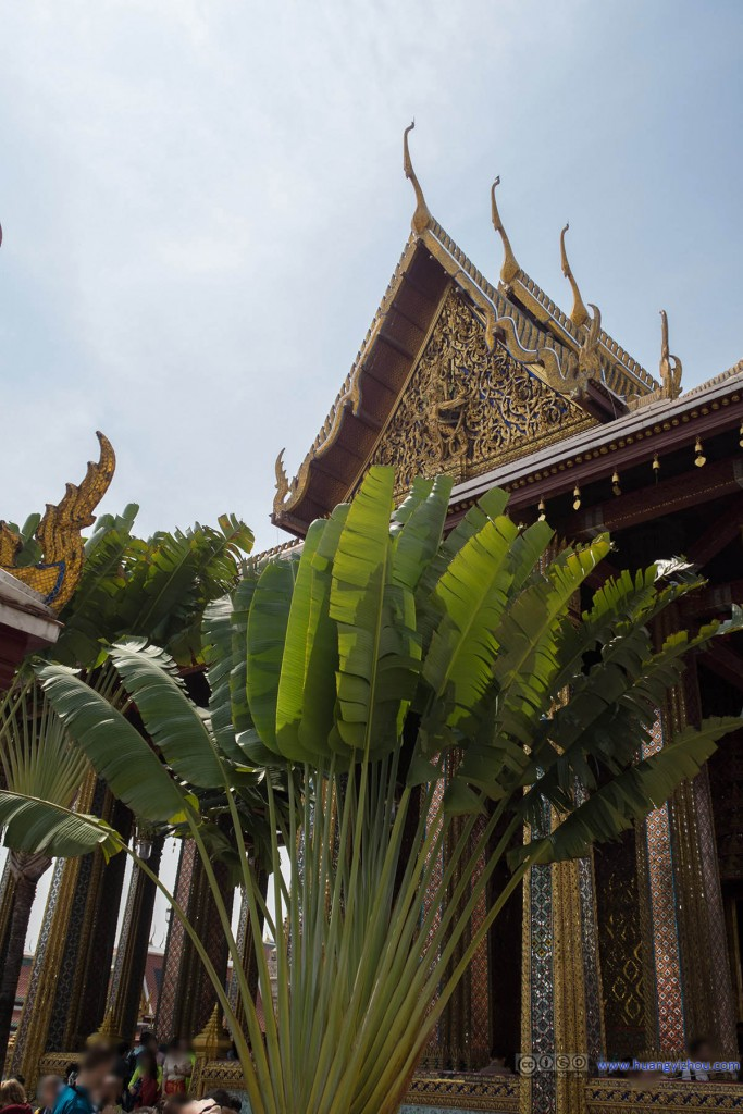 玉佛寺主殿入口旁的芭蕉