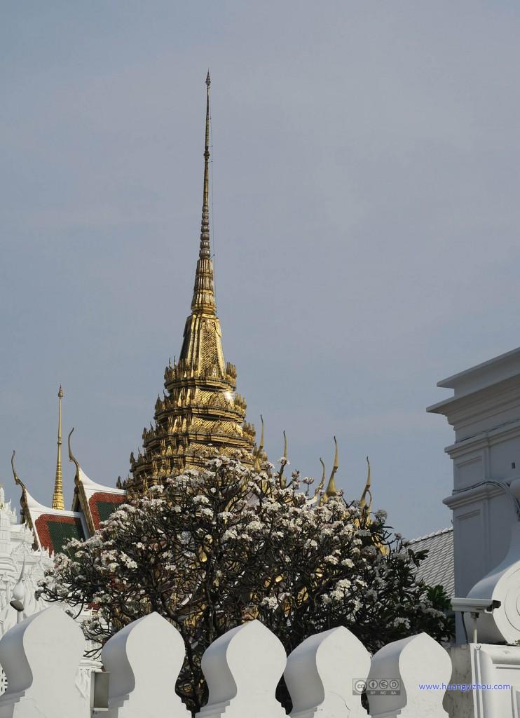 大皇宫外面看到的,屋顶下,鲜花绽放