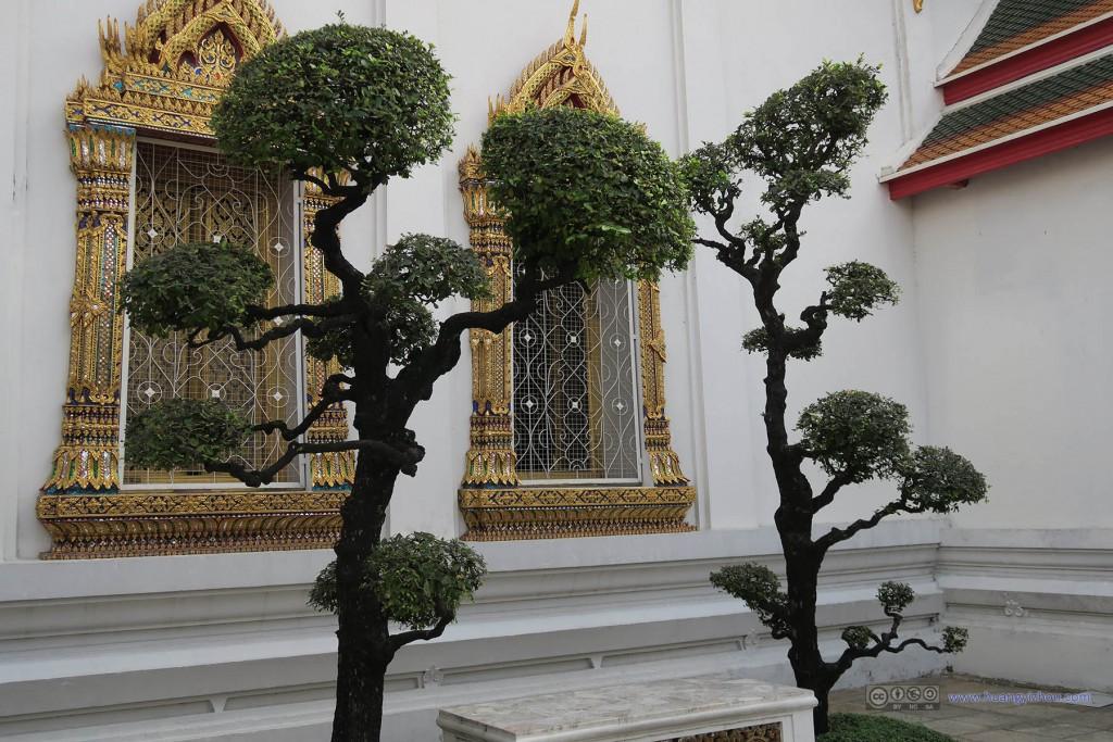 卧佛寺内部,一些打理较好的植物装饰